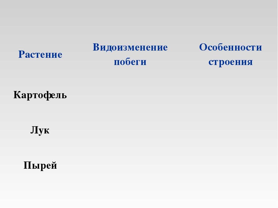 РастениеВидоизменение побегиОсобенности строения Картофель Лук Пырей