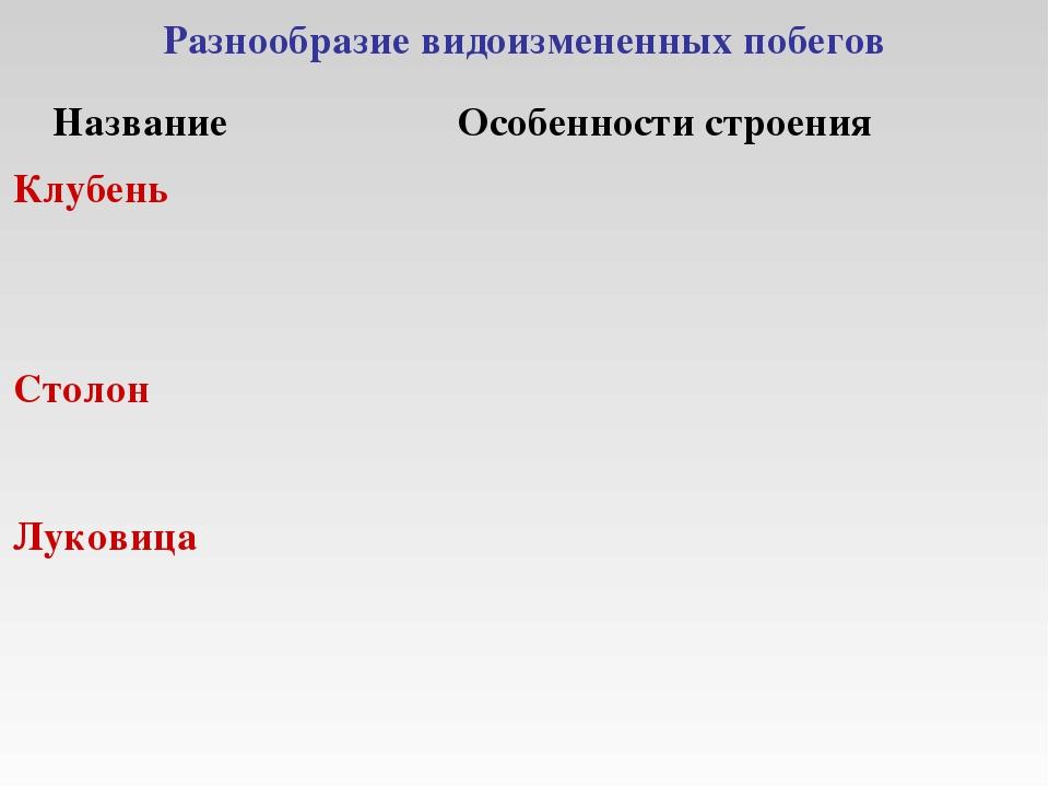 Разнообразие видоизмененных побегов НазваниеОсобенности строения Клубень Ст...