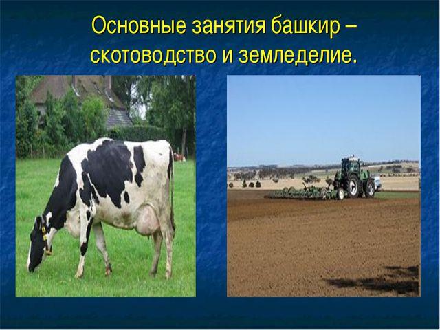 Основные занятия башкир –скотоводство и земледелие.