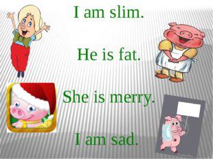 I am slim. He is fat. She is merry. I am sad.