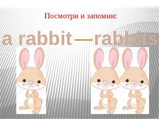 Посмотри и запомни: a rabbit rabbits