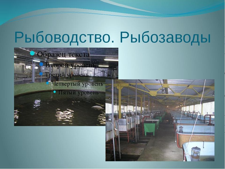 Рыбоводство. Рыбозаводы