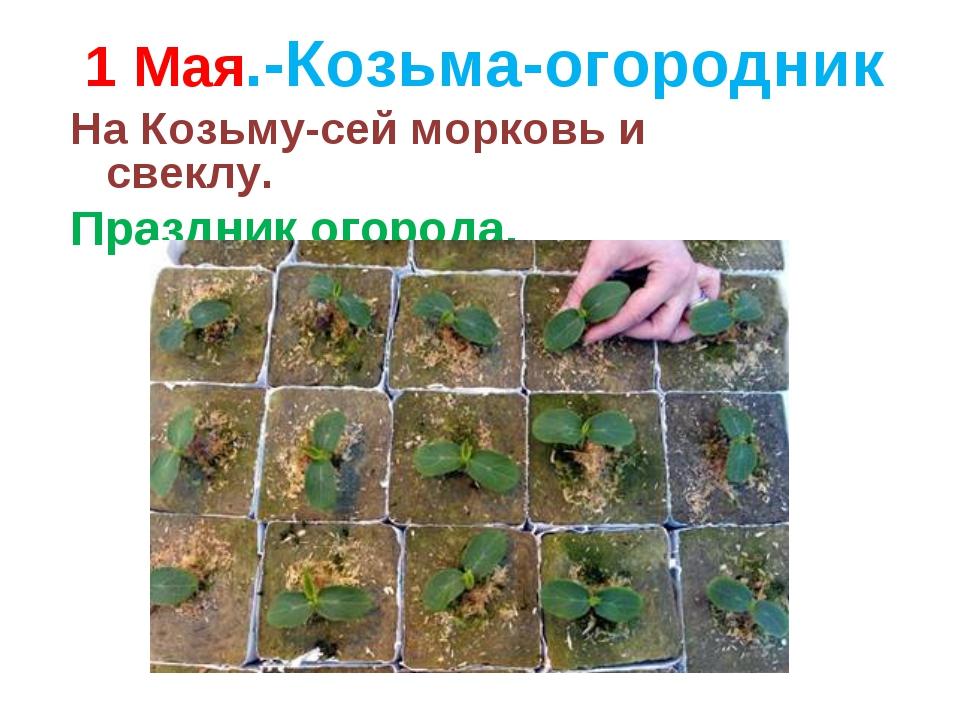 1 Мая.-Козьма-огородник На Козьму-сей морковь и свеклу. Праздник огорода.