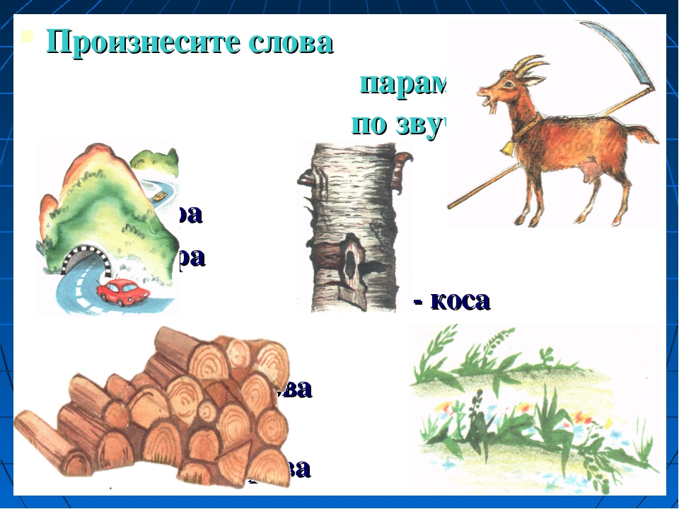 Произнесите слова парами и сравните по звучанию гора кора коза - коса дрова т...