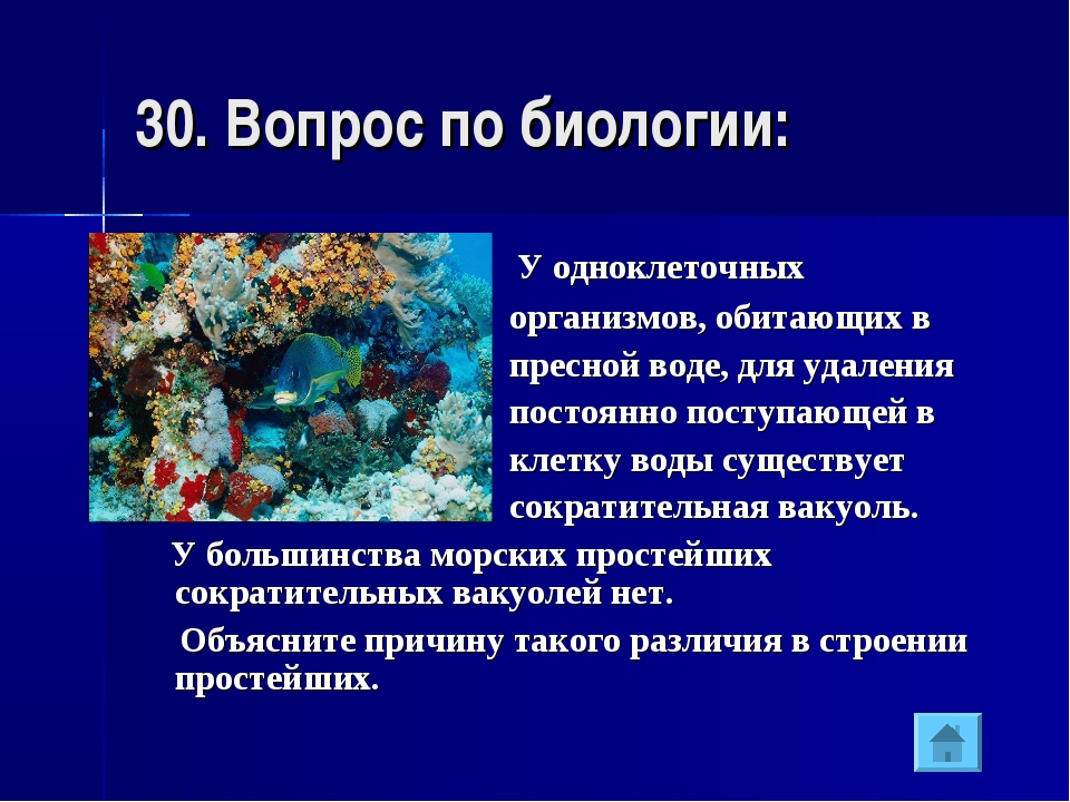30. Вопрос по биологии: У одноклеточных организмов, обитающих в пресной воде,...