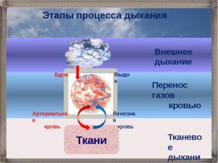 Внешнее дыхание Венозная кровь Ткани Артериальная кровь Перенос газов кровью