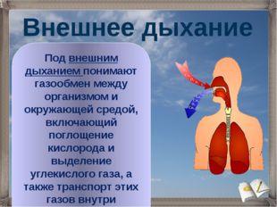 Под внешним дыханием понимают газообмен между организмом и окружающей средой,
