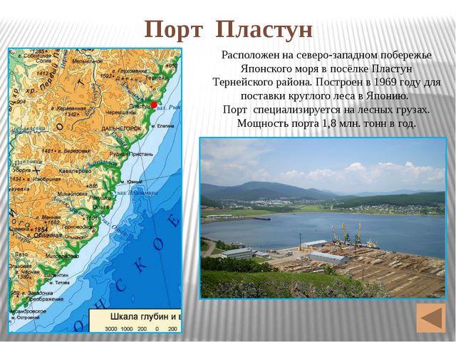 Авиационный транспорт В 40км от Владивостока находится самый крупный аэропорт...