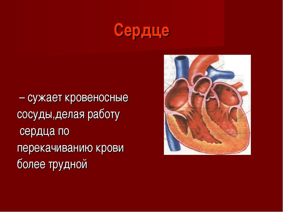 Сердце – сужает кровеносные сосуды,делая работу сердца по перекачиванию крови...