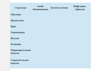 Структура Амеба обыкновенная Эвглена зеленая Инфузория-туфелька Оболочка Цито
