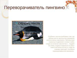 Переворачиватель пингвинов Особенно она востребована там, где вблизи места жи