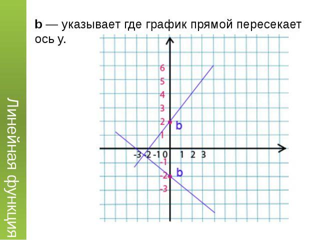 b— указывает где график прямой пересекает ось y. Линейная функция