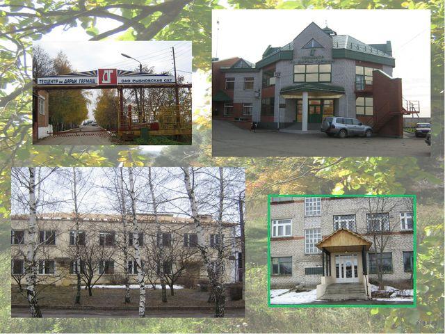 Рыбновская МТС организовалась в 1932 году. Большой вклад в развитие МТС внес...