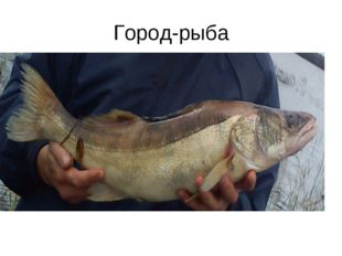 Город-рыба