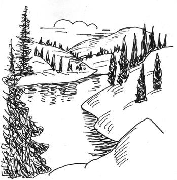 Рисунки леса тайги карандашом