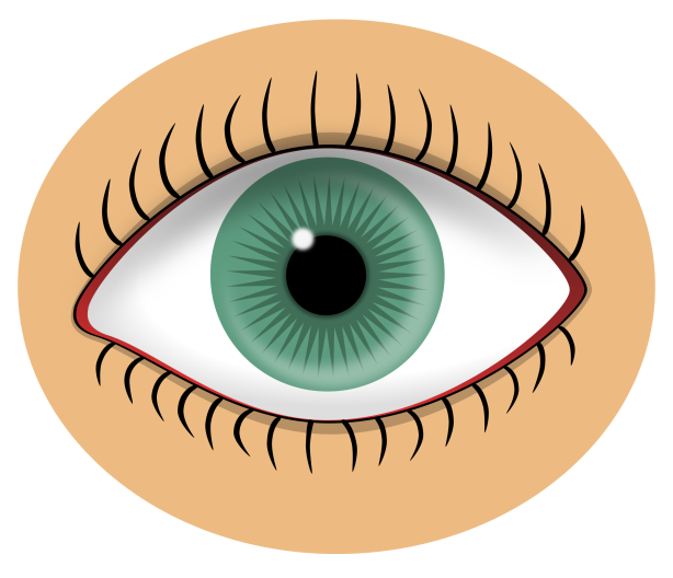 https://openclipart.org/image/2400px/svg_to_png/24680/beakman-Blue-eye.png