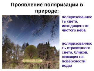 Проявление поляризации в природе: поляризованность света, исходящего от чисто