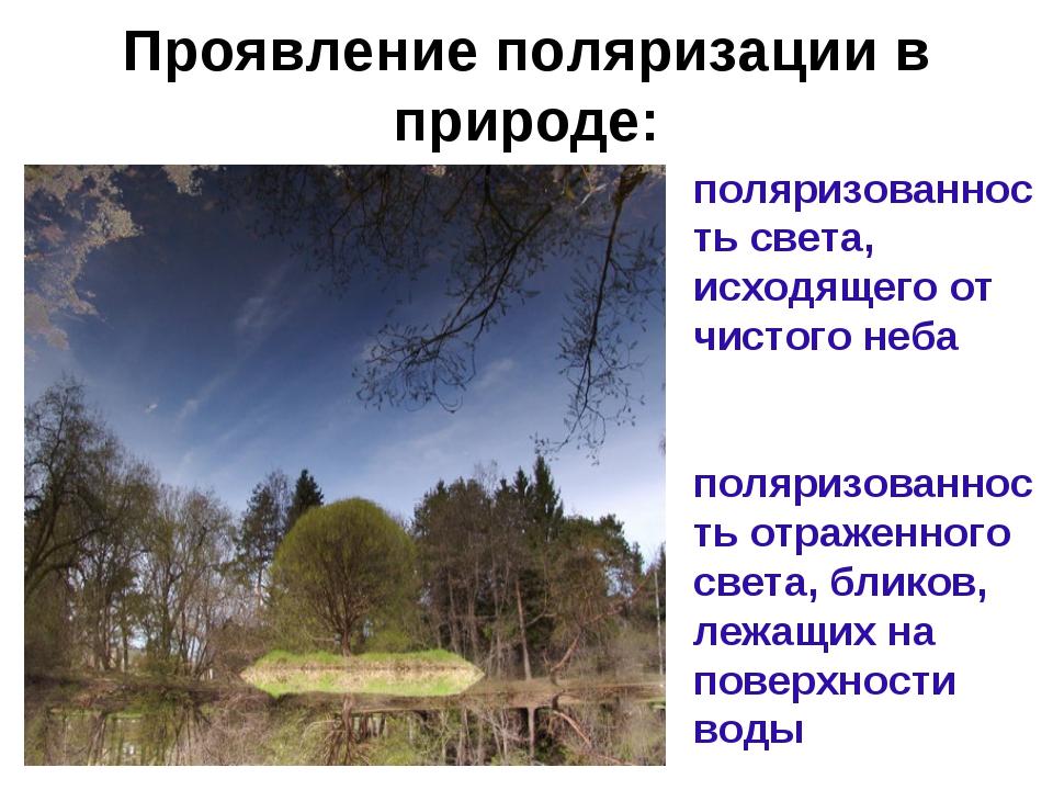 Проявление поляризации в природе: поляризованность света, исходящего от чисто...