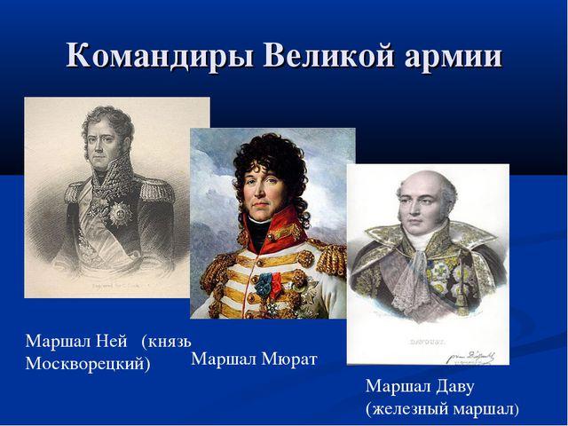 Командиры Великой армии Маршал Ней (князь Москворецкий) Маршал Мюрат Маршал Д...