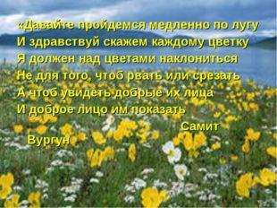 «Давайте пройдемся медленно по лугу И здравствуй скажем каждому цветку Я долж
