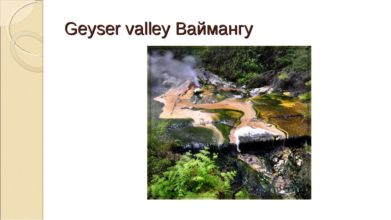 Geyser valley Ваймангу