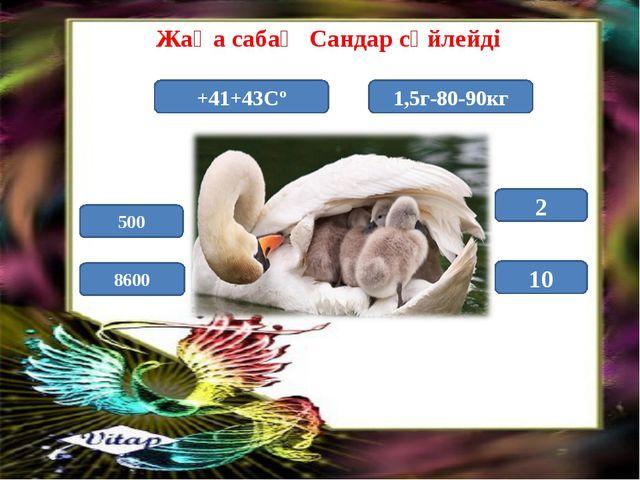 Жаңа сабақ Сандар сөйлейді +41+43Сº 1,5г-80-90кг 8600 10 500 2