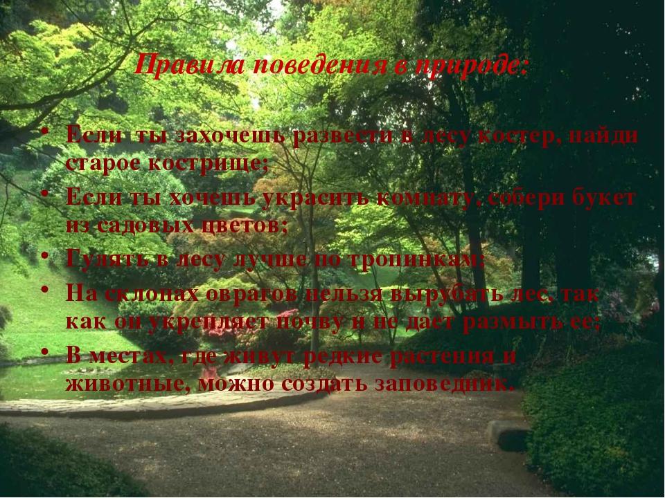 Правила поведения в природе: Если ты захочешь развести в лесу костер, найди с...