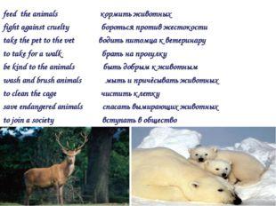 feed the animals кормить животных fight against cruelty бороться против жесто