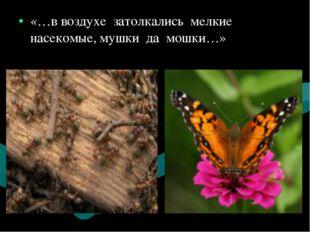 «…в воздухе затолкались мелкие насекомые, мушки да мошки…»