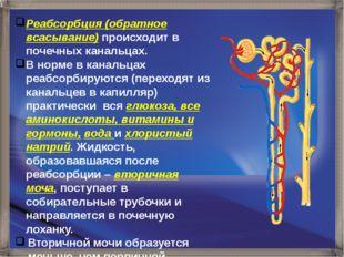 Реабсорбция (обратное всасывание) происходит в почечных канальцах. В норме в