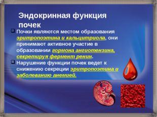 Эндокринная функция почек Почки являются местом образования эритропоэтина и к