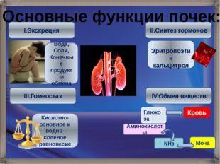I.Экскреция III.Гомеостаз II.Синтез гормонов IV.Обмен веществ Вода, Соли, Кон