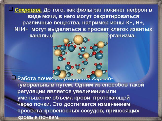 Секреция. До того, как фильтрат покинет нефрон в виде мочи, в него могут секр...