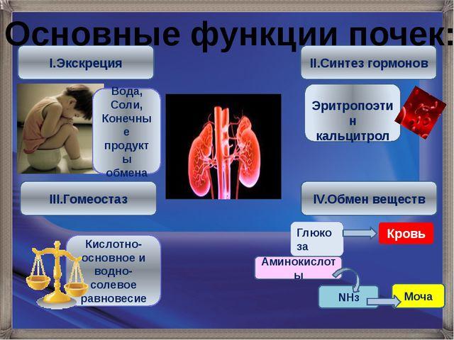 I.Экскреция III.Гомеостаз II.Синтез гормонов IV.Обмен веществ Вода, Соли, Кон...