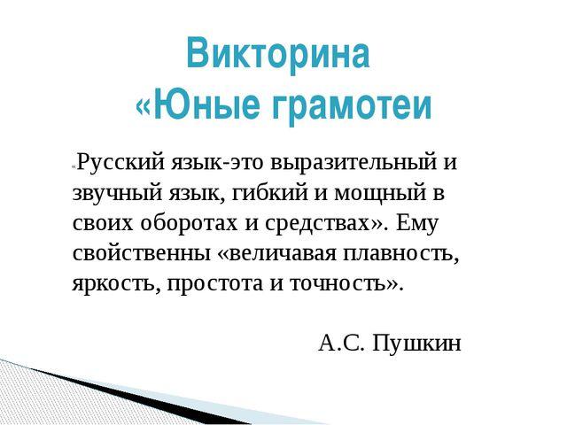 «Русский язык-это выразительный и звучный язык, гибкий и мощный в своих оборо...