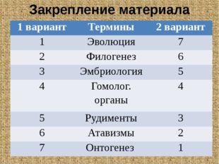 Закрепление материала 1 вариант Термины 2 вариант 1 Эволюция 7 2 Филогенез 6