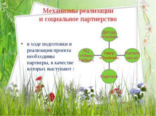 Механизмы реализации и социальное партнерство в ходе подготовки и реализации