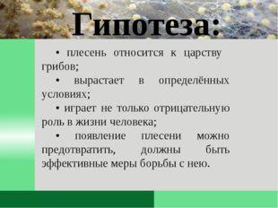 • плесень относится к царству грибов; • вырастает в определённых условиях; •