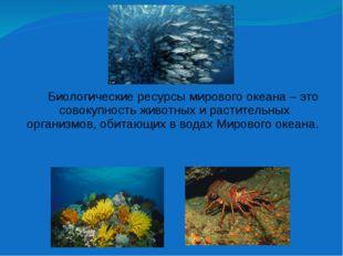 Биологические ресурсы мирового океана – это совокупность животных и растител