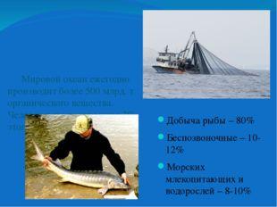 Добыча рыбы – 80% Беспозвоночные – 10-12% Морских млекопитающих и водорослей