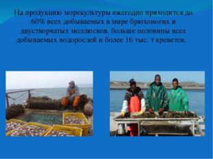 На продукцию морекультурыежегодно приходится до 60% всех добываемых в мире б