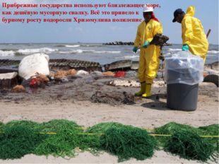 Прибрежные государства используют близлежащее море, как дешёвую мусорную сва