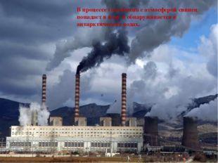 В процессе газообмена с атмосферой свинец попадает в воду и обнаруживается в