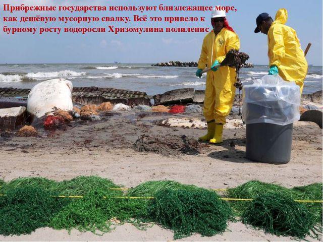 Прибрежные государства используют близлежащее море, как дешёвую мусорную сва...