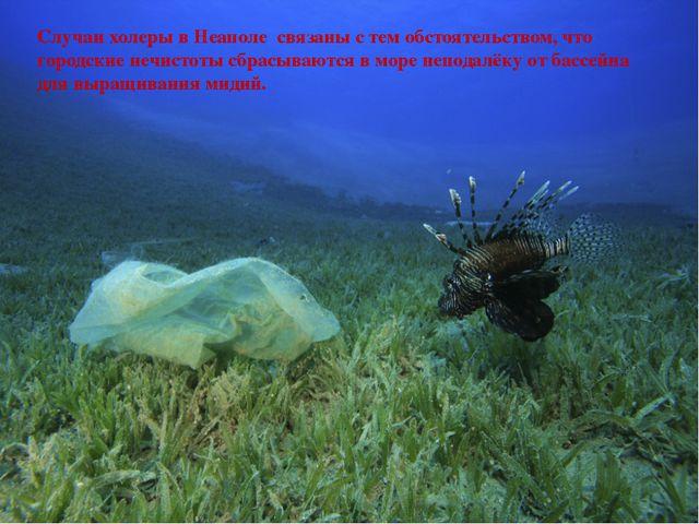 Случаи холеры в Неаполе связаны с тем обстоятельством, что городские нечисто...