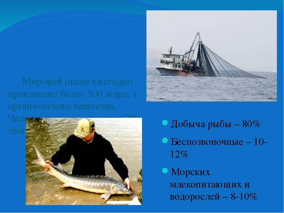 Добыча рыбы – 80% Беспозвоночные – 10-12% Морских млекопитающих и водорослей...