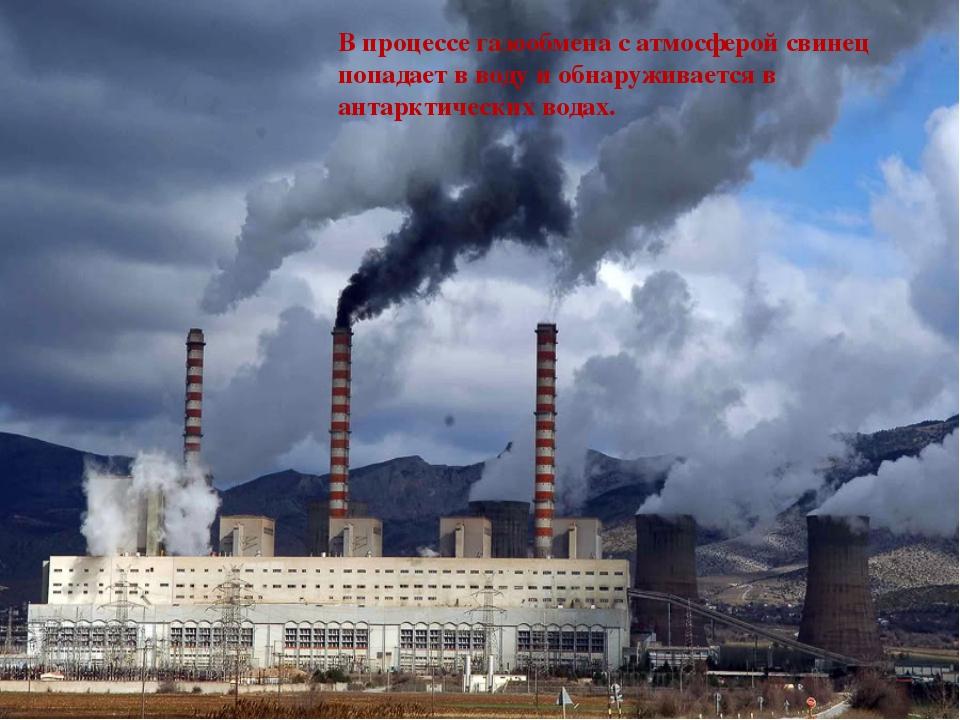 В процессе газообмена с атмосферой свинец попадает в воду и обнаруживается в...