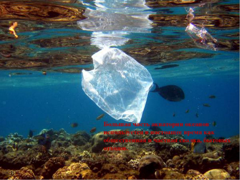 Большая часть акватории океанов используется в настоящее время как обществен...