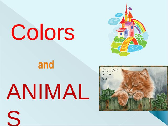 Colors ANIMALS and