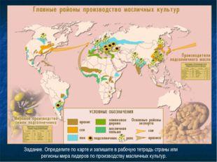 Задание. Определите по карте и запишите в рабочую тетрадь страны или регионы